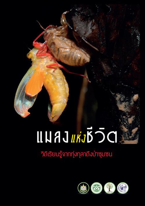 Book Cover: แมลงแห่งชีวิต วิถีเรียนรู้จากทุ่งกุลาถึงป่าชุมชน